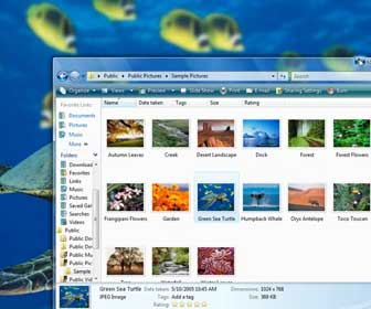 Learn How-To Add or Change your Windows Vista Desktop Background Image