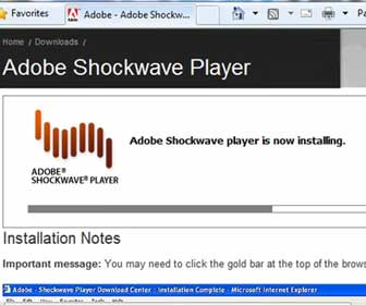 How-To Install the Adobe Shockwave Player on Internet Explorer 8