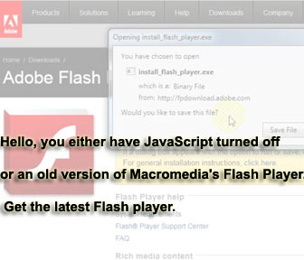 How-To Fix Adobe Flash Player Errors on Firefox and Internet Explorer